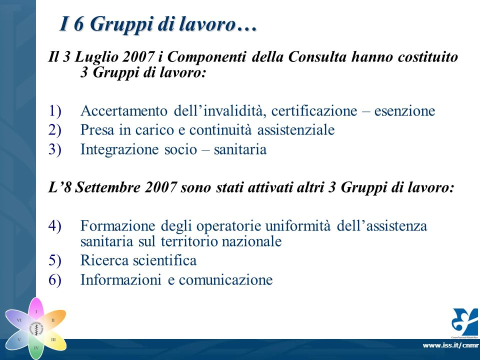 www.iss.it/cnmr Il 3 Luglio 2007 i Componenti della Consulta hanno costituito 3 Gruppi di lavoro: 1)Accertamento dellinvalidità, certificazione – esen