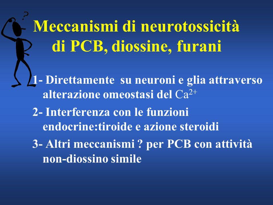 Meccanismi di neurotossicità di PCB, diossine, furani 1- Direttamente su neuroni e glia attraverso alterazione omeostasi del Ca 2+ 2- Interferenza con