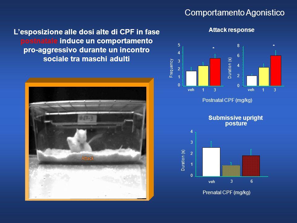 Duration (s) Prenatal CPF (mg/kg) 0 1 2 3 4 veh 3 6 Submissive upright posture Attack response Postnatal CPF (mg/kg) 0 2 4 6 8 Duration (s) veh 13 Fre