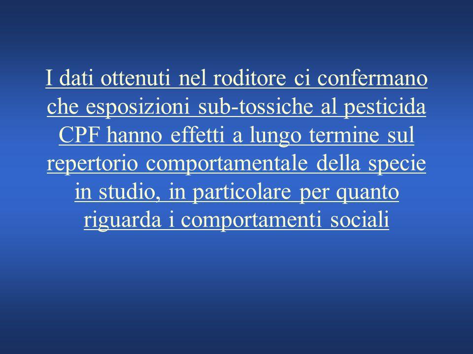 I dati ottenuti nel roditore ci confermano che esposizioni sub-tossiche al pesticida CPF hanno effetti a lungo termine sul repertorio comportamentale