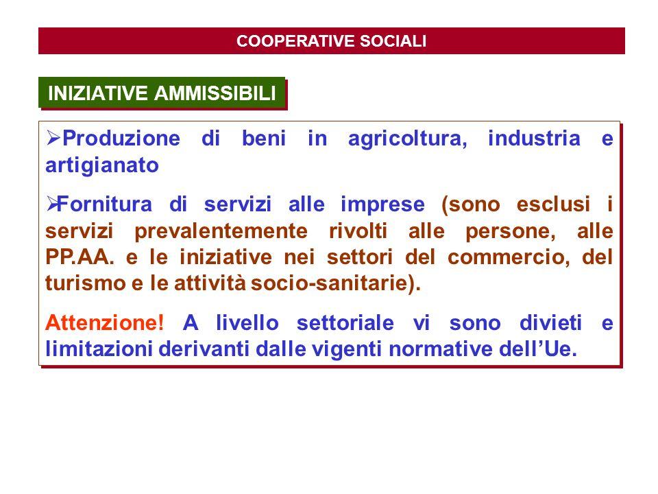 COOPERATIVE SOCIALI Produzione di beni in agricoltura, industria e artigianato Fornitura di servizi alle imprese (sono esclusi i servizi prevalentemen