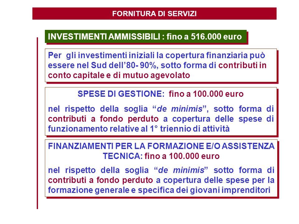 FORNITURA DI SERVIZI INVESTIMENTI AMMISSIBILI : fino a 516.000 euro Per gli investimenti iniziali la copertura finanziaria può essere nel Sud dell80-