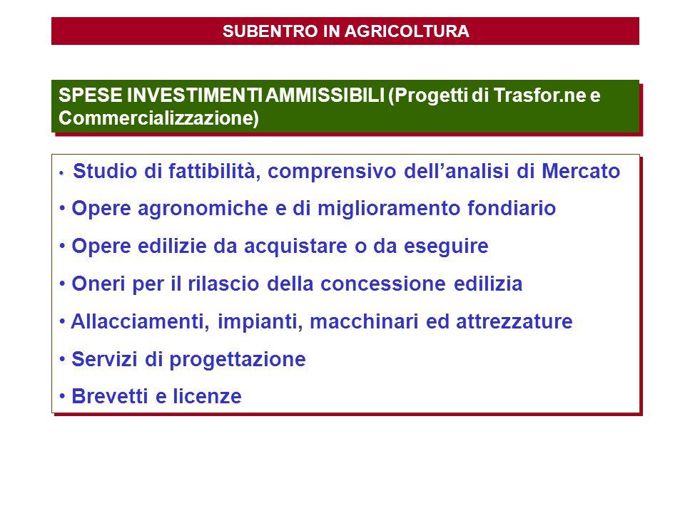 SUBENTRO IN AGRICOLTURA SPESE INVESTIMENTI AMMISSIBILI (Progetti di Trasfor.ne e Commercializzazione) Studio di fattibilità, comprensivo dellanalisi d