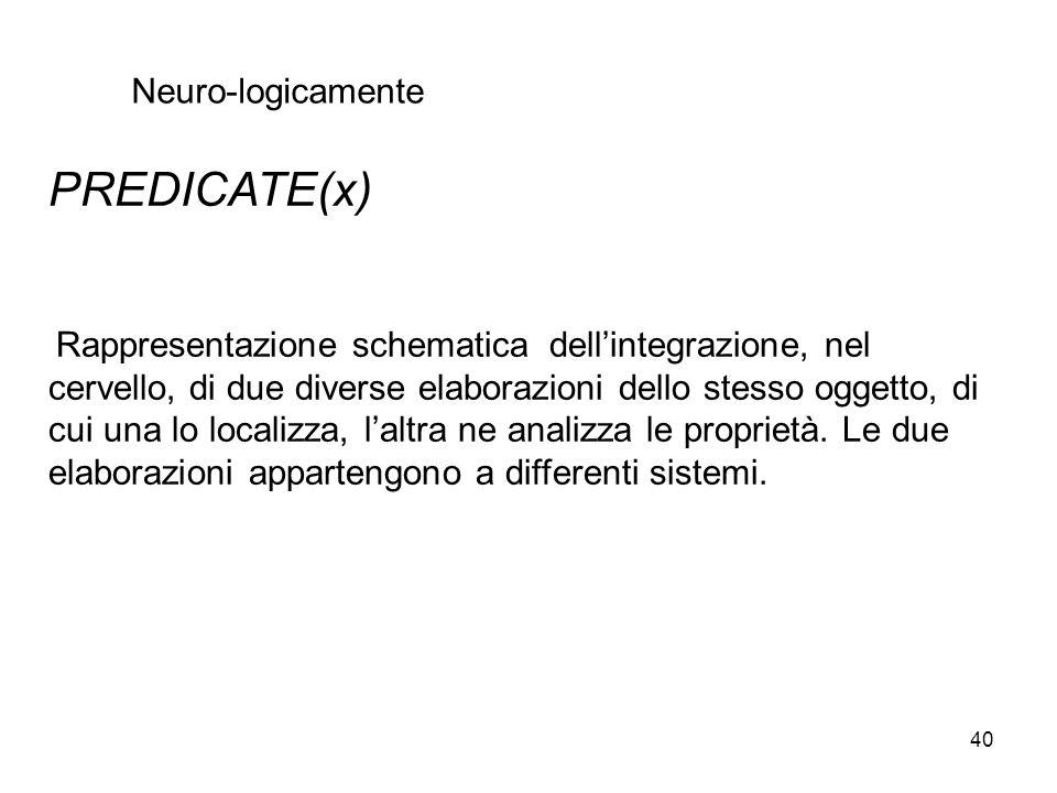 40 PREDICATE(x) Rappresentazione schematica dellintegrazione, nel cervello, di due diverse elaborazioni dello stesso oggetto, di cui una lo localizza,