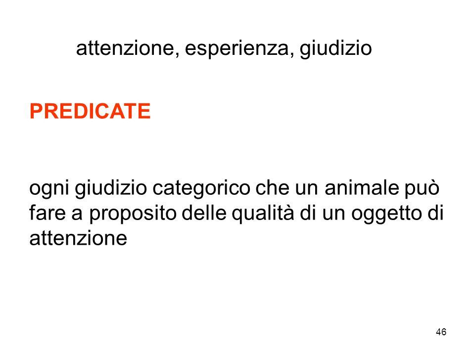 46 PREDICATE ogni giudizio categorico che un animale può fare a proposito delle qualità di un oggetto di attenzione attenzione, esperienza, giudizio