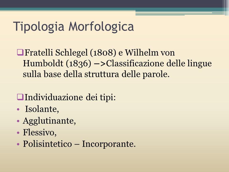 Tipologia Morfologica Fratelli Schlegel (1808) e Wilhelm von Humboldt (1836) –>Classificazione delle lingue sulla base della struttura delle parole. I