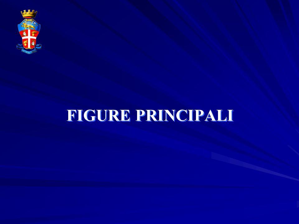 FIGURE PRINCIPALI