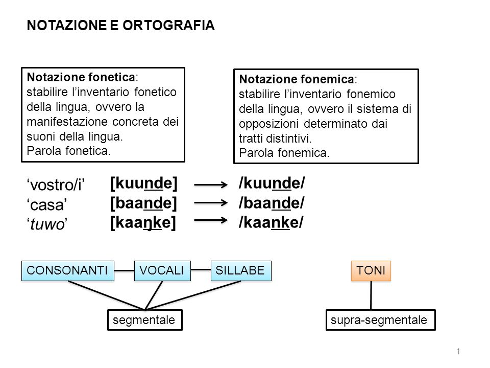 12 cavità, buco [bo:] otteniamo linformazione utilizzando il termine corrispondente nella lingua veicolare (o in altra lingua di contatto) [bòó] B2