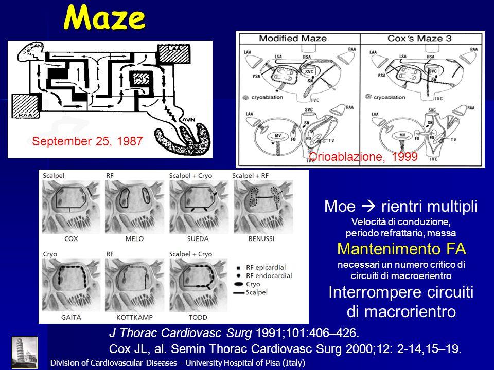 Division of Cardiovascular Diseases - University Hospital of Pisa (Italy) Maze Moe rientri multipli Velocità di conduzione, periodo refrattario, massa