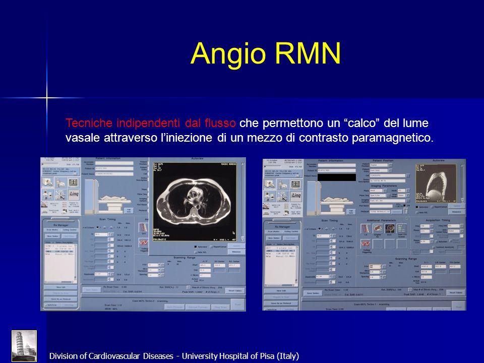 Division of Cardiovascular Diseases - University Hospital of Pisa (Italy) Angio RMN Tecniche indipendenti dal flusso che permettono un calco del lume
