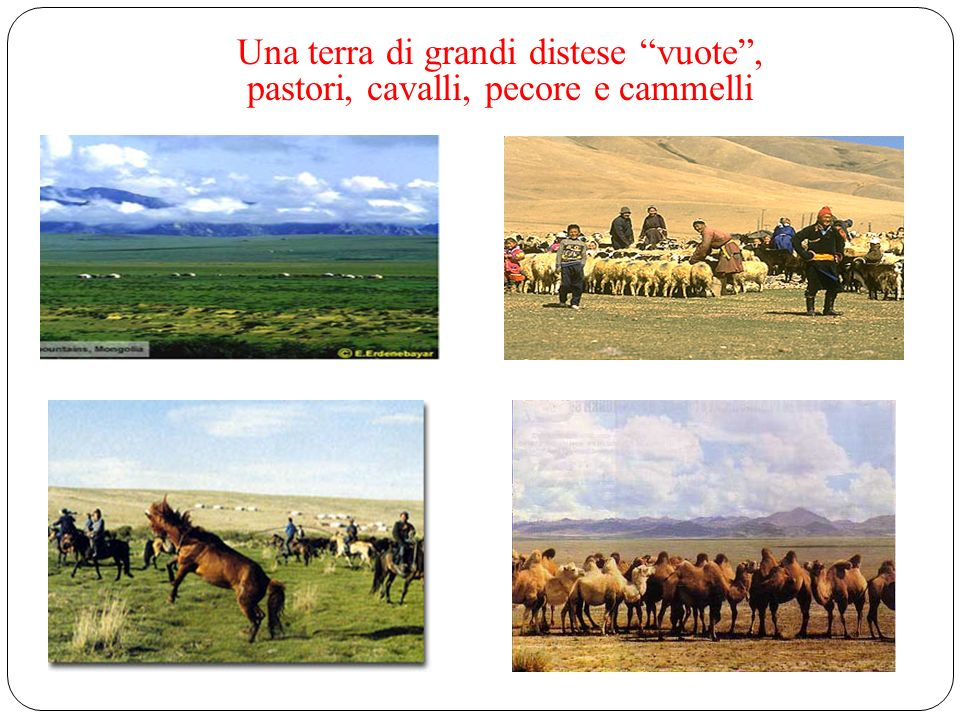 the five domesticated animals revered by nomads Una terra di grandi distese vuote, pastori, cavalli, pecore e cammelli
