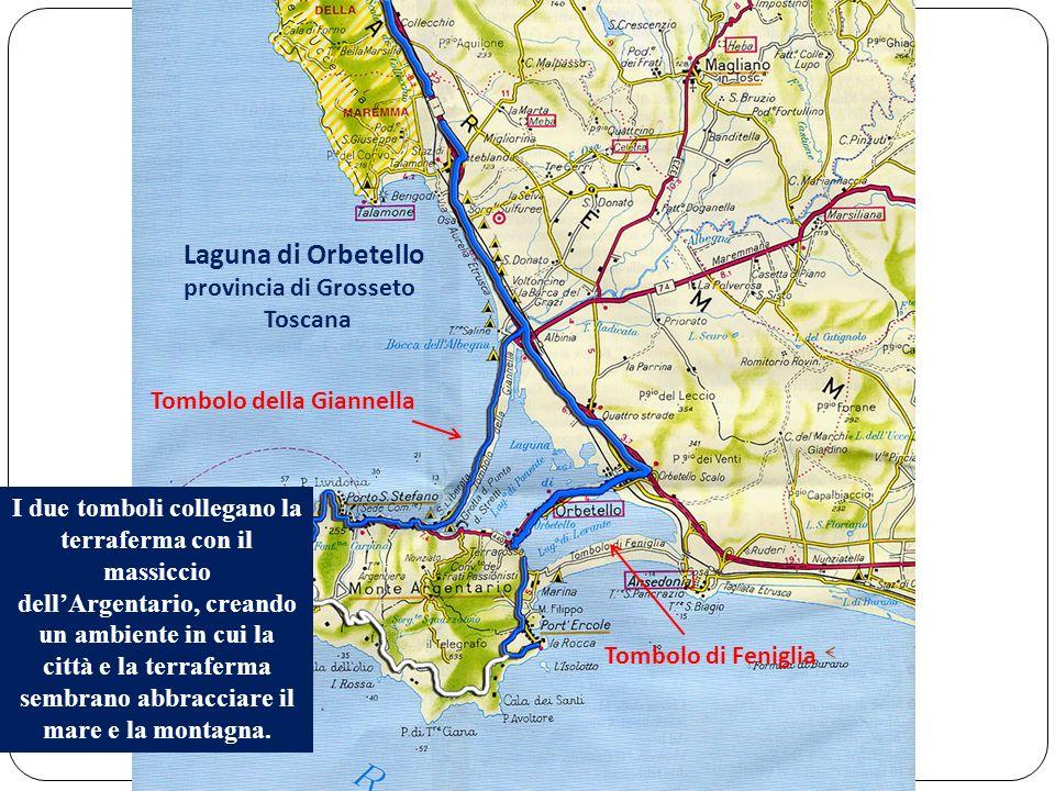 Tombolo di Feniglia Tombolo della Giannella Laguna di Orbetello provincia di Grosseto Toscana I due tomboli collegano la terraferma con il massiccio d