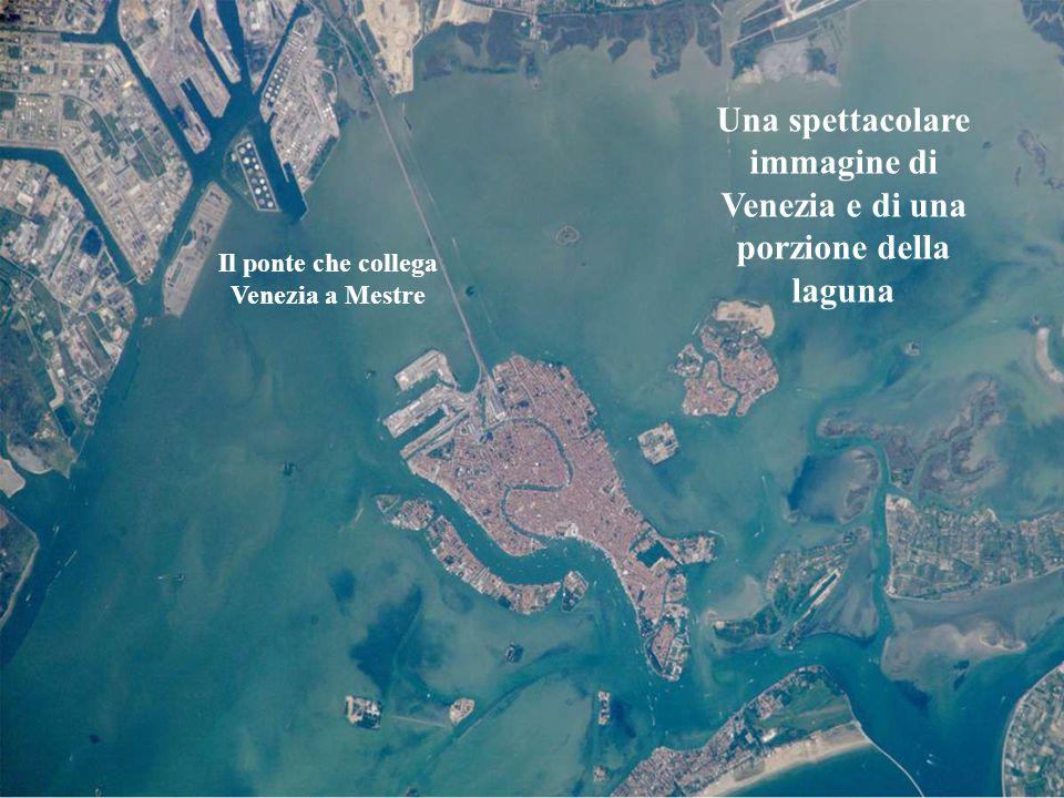 La Giudecca La Giudecca è lisola più estesa delle città. Separata dal centro storico dal grande e profondo canale omonimo. Anticamente era denominata