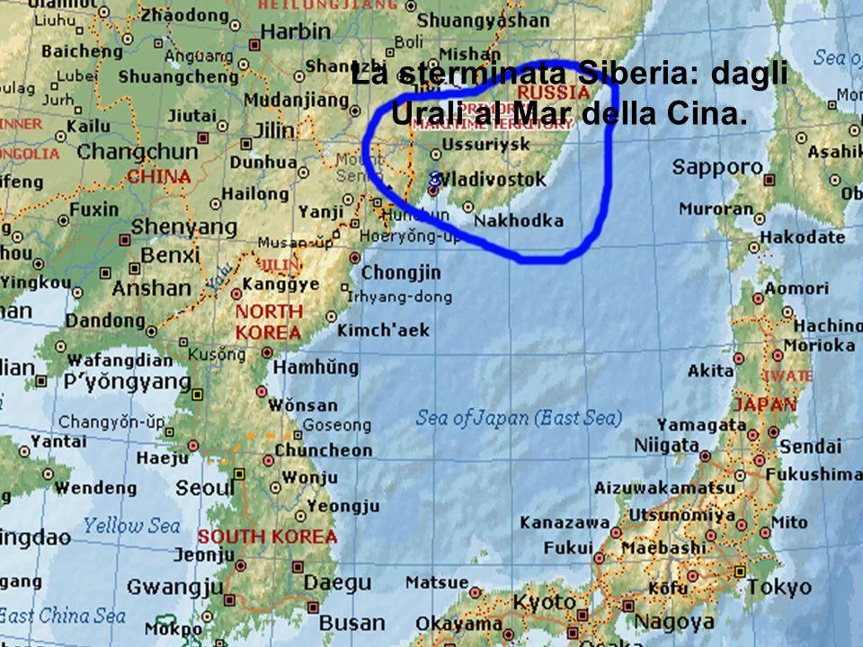 Da Mosca a Vladivostok www.didadada.it Le principali tappe della Transiberiana, da Mosca a Vladivostok, città che si affaccia sul mar del Giappone. La