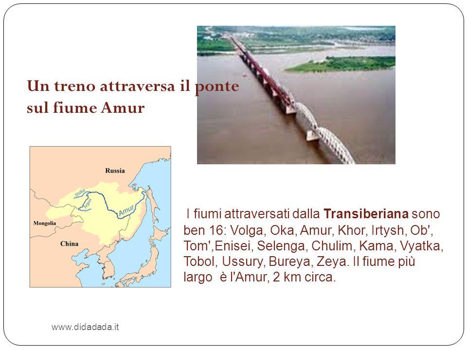 www.didadada.it I fiumi attraversati dalla Transiberiana sono ben 16: Volga, Oka, Amur, Khor, Irtysh, Ob', Tom',Enisei, Selenga, Chulim, Kama, Vyatka,