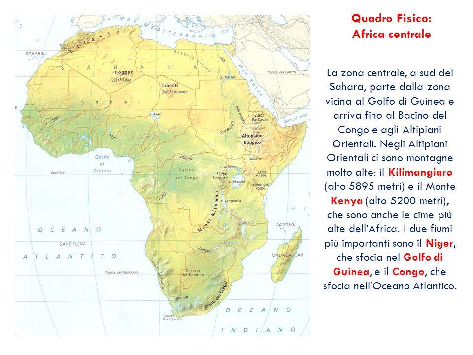 La zona centrale, a sud del Sahara, parte dalla zona vicina al Golfo di Guinea e arriva fino al Bacino del Congo e agli Altipiani Orientali. Negli Alt