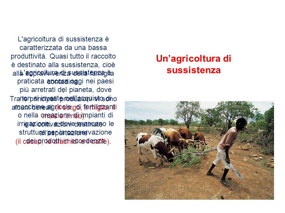 L'agricoltura di sussistenza è caratterizzata da una bassa produttività. Quasi tutto il raccolto è destinato alla sussistenza, cioè alla sopravvivenza