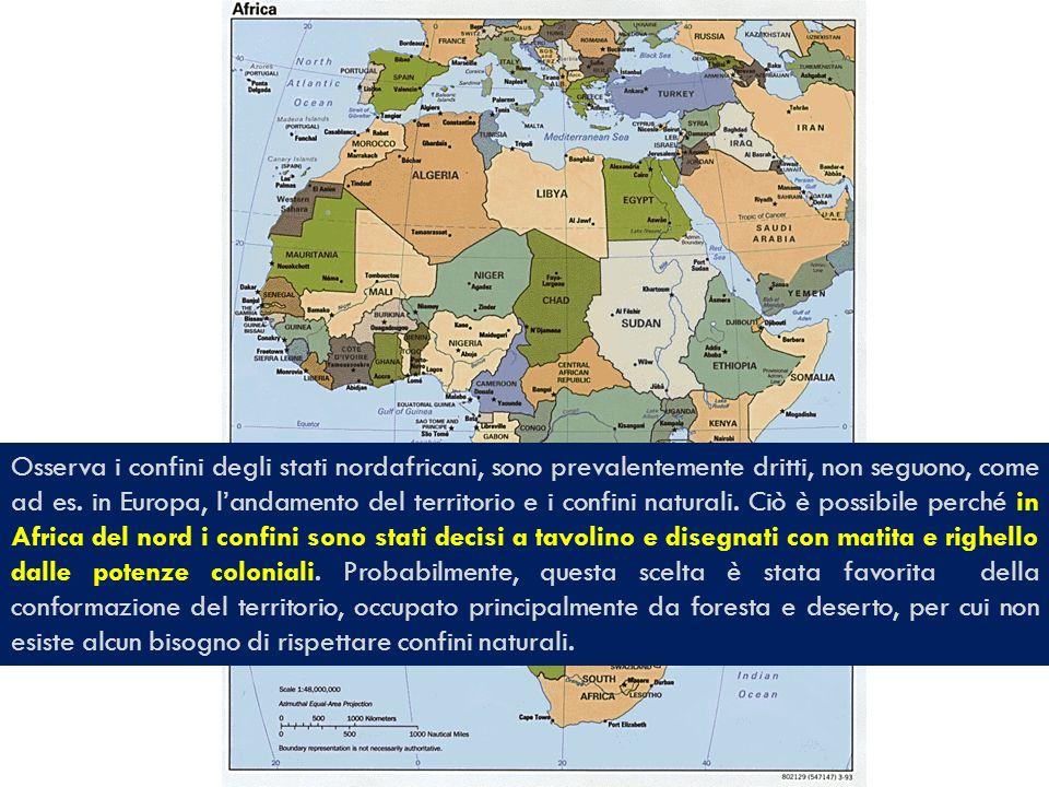 Osserva i confini degli stati nordafricani, sono prevalentemente dritti, non seguono, come ad es. in Europa, landamento del territorio e i confini nat