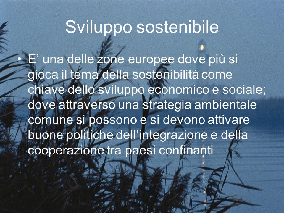 Sviluppo sostenibile E una delle zone europee dove più si gioca il tema della sostenibilità come chiave dello sviluppo economico e sociale; dove attraverso una strategia ambientale comune si possono e si devono attivare buone politiche dellintegrazione e della cooperazione tra paesi confinanti
