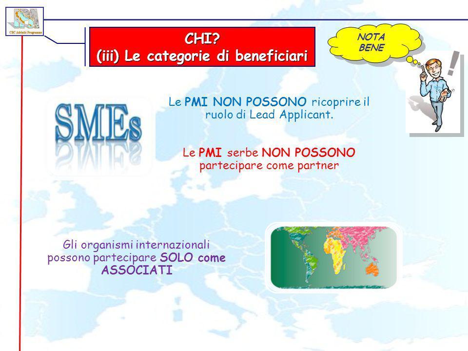 CHI? (iii) Le categorie di beneficiari Le PMI NON POSSONO ricoprire il ruolo di Lead Applicant. NOTA BENE Gli organismi internazionali possono parteci