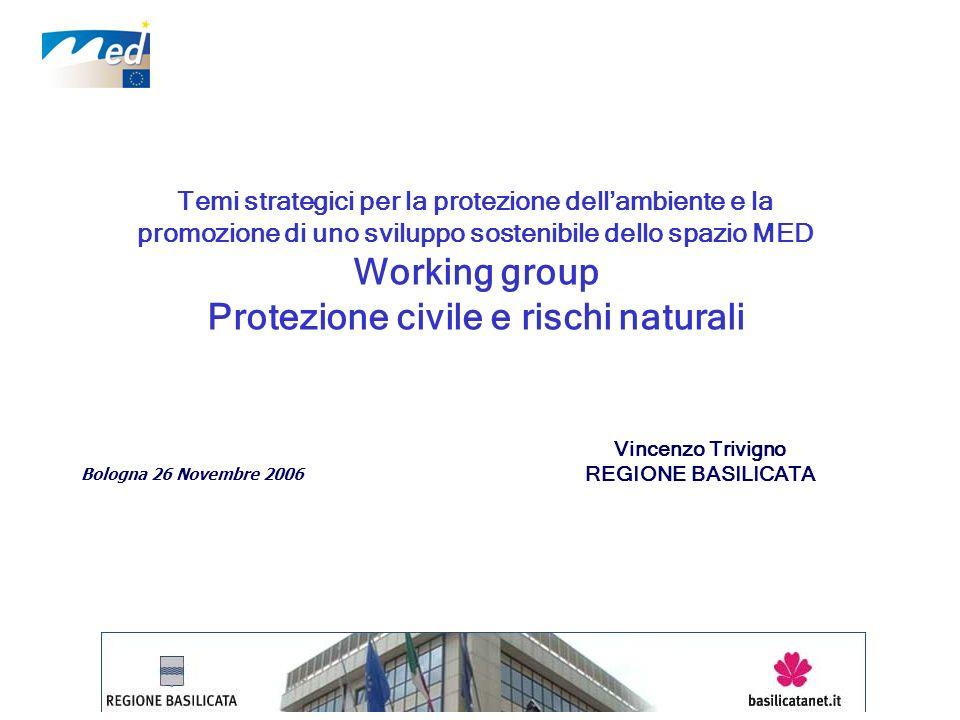Temi strategici per la protezione dellambiente e la promozione di uno sviluppo sostenibile dello spazio MED Working group Protezione civile e rischi n