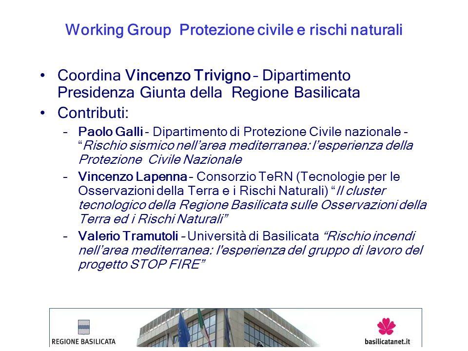 Working Group Protezione civile e rischi naturali Coordina Vincenzo Trivigno – Dipartimento Presidenza Giunta della Regione Basilicata Contributi: –Pa