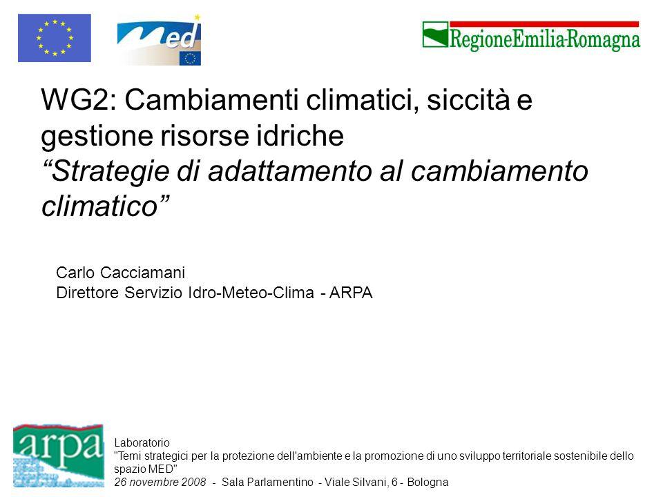 WG2: Cambiamenti climatici, siccità e gestione risorse idriche Strategie di adattamento al cambiamento climatico Carlo Cacciamani Direttore Servizio I