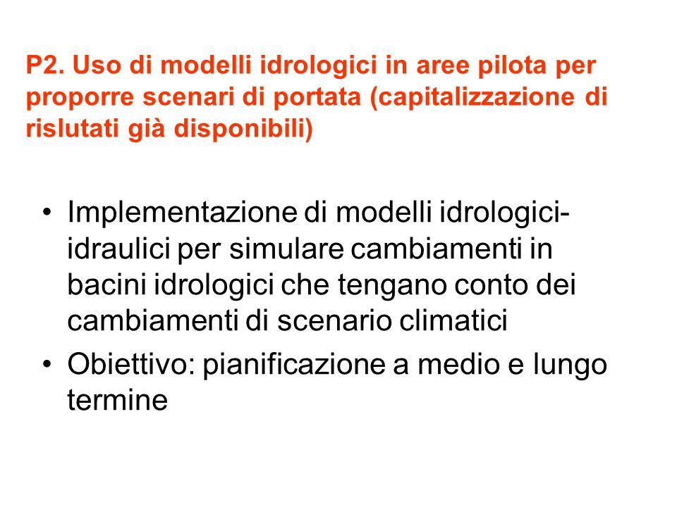 P2. Uso di modelli idrologici in aree pilota per proporre scenari di portata (capitalizzazione di rislutati già disponibili) Implementazione di modell