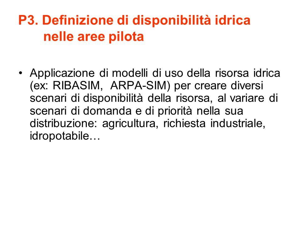 P3. Definizione di disponibilità idrica nelle aree pilota Applicazione di modelli di uso della risorsa idrica (ex: RIBASIM, ARPA-SIM) per creare diver