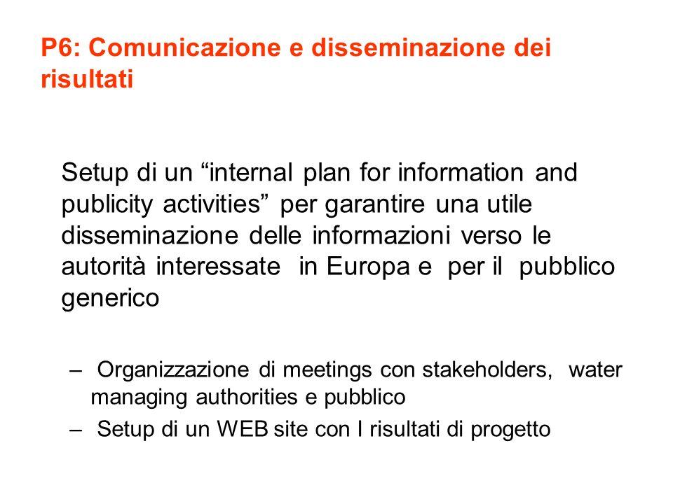 P6: Comunicazione e disseminazione dei risultati Setup di un internal plan for information and publicity activities per garantire una utile disseminaz