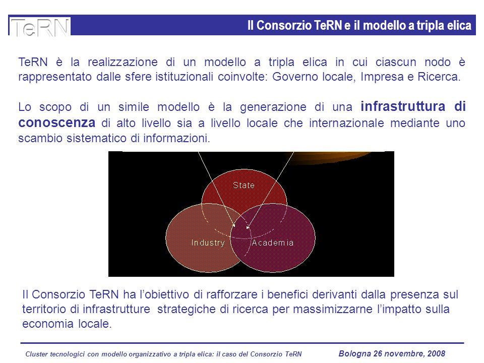 Cluster tecnologici con modello organizzativo a tripla elica: il caso del Consorzio TeRN Lagopesole 16 ottobre 2008 Il Consorzio TeRN e il modello a t