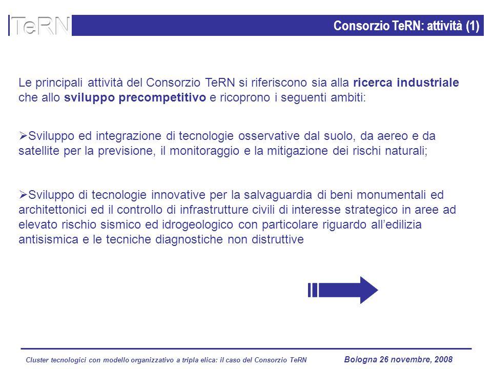Cluster tecnologici con modello organizzativo a tripla elica: il caso del Consorzio TeRN Lagopesole 16 ottobre 2008 Le principali attività del Consorz