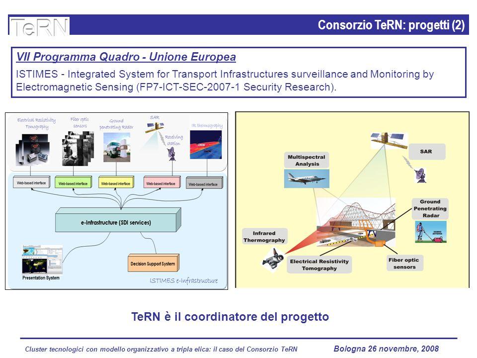 Cluster tecnologici con modello organizzativo a tripla elica: il caso del Consorzio TeRN Lagopesole 16 ottobre 2008 Consorzio TeRN: progetti (2) VII P