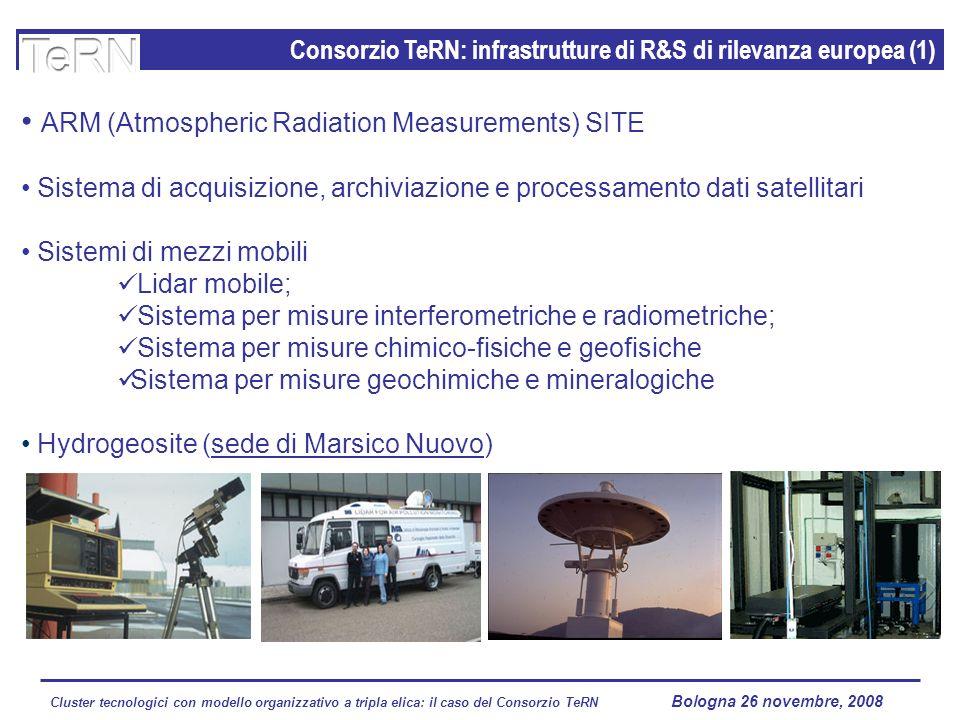 Cluster tecnologici con modello organizzativo a tripla elica: il caso del Consorzio TeRN Lagopesole 16 ottobre 2008 Consorzio TeRN c/o IMAA-CNR - C.da S.