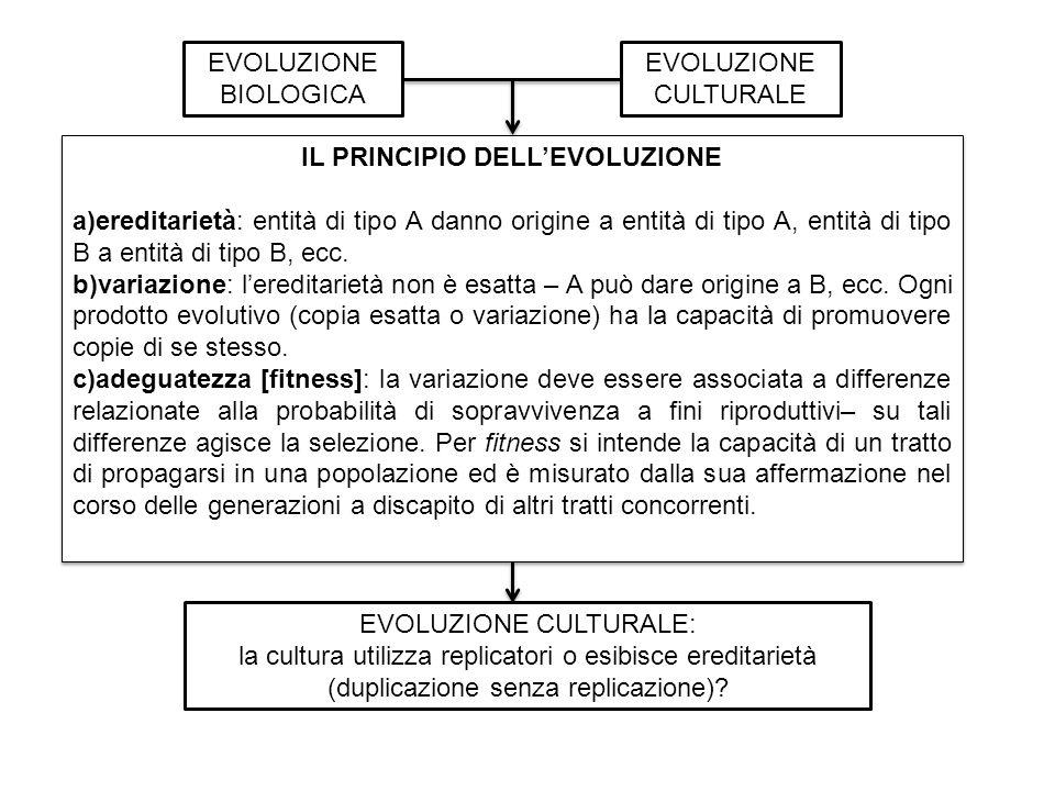 EVOLUZIONE BIOLOGICA EVOLUZIONE CULTURALE IL PRINCIPIO DELLEVOLUZIONE a)ereditarietà: entità di tipo A danno origine a entità di tipo A, entità di tipo B a entità di tipo B, ecc.