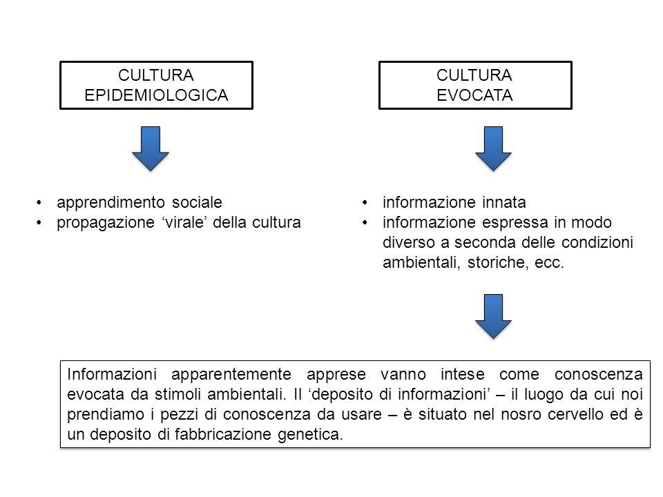 CULTURA EPIDEMIOLOGICA CULTURA EVOCATA apprendimento sociale propagazione virale della cultura informazione innata informazione espressa in modo diverso a seconda delle condizioni ambientali, storiche, ecc.