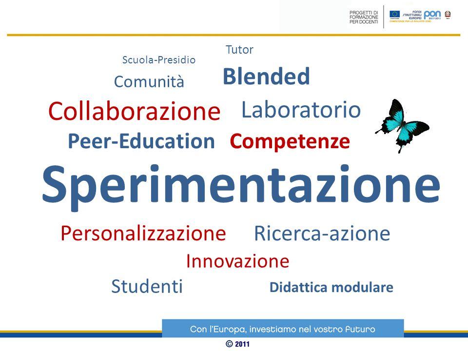 Scuola-Presidio Tutor Blended Sperimentazione Comunità Collaborazione Laboratorio Peer-EducationCompetenze Personalizzazione Ricerca-azione Innovazion