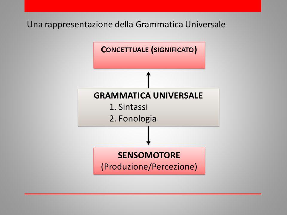 C ONCETTUALE ( SIGNIFICATO ) Una rappresentazione della Grammatica Universale GRAMMATICA UNIVERSALE 1.