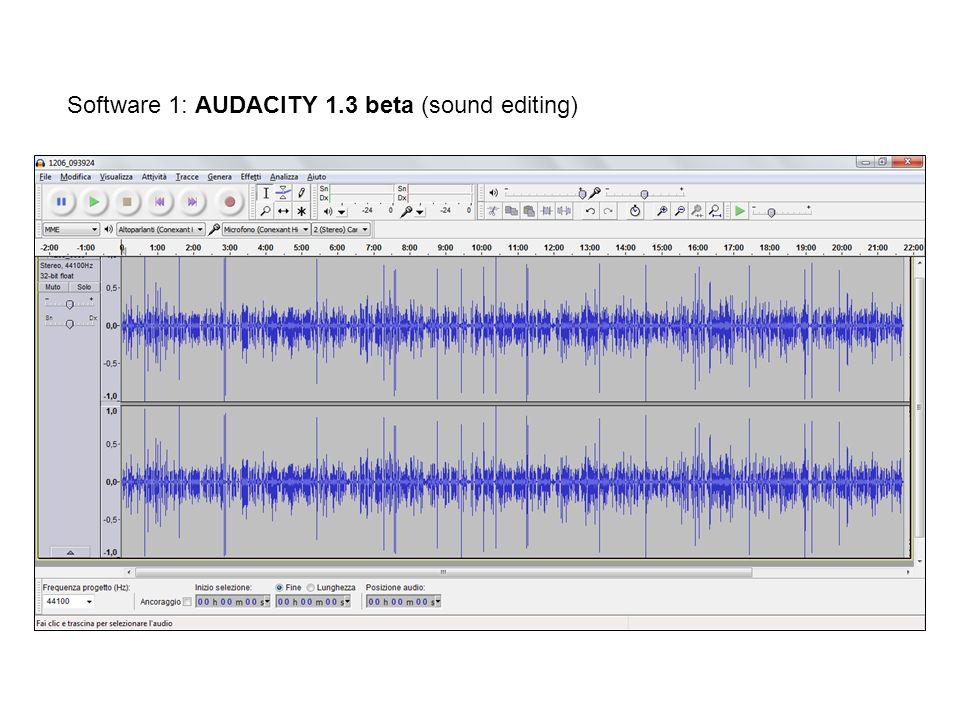 Software 1: AUDACITY 1.3 beta (sound editing)