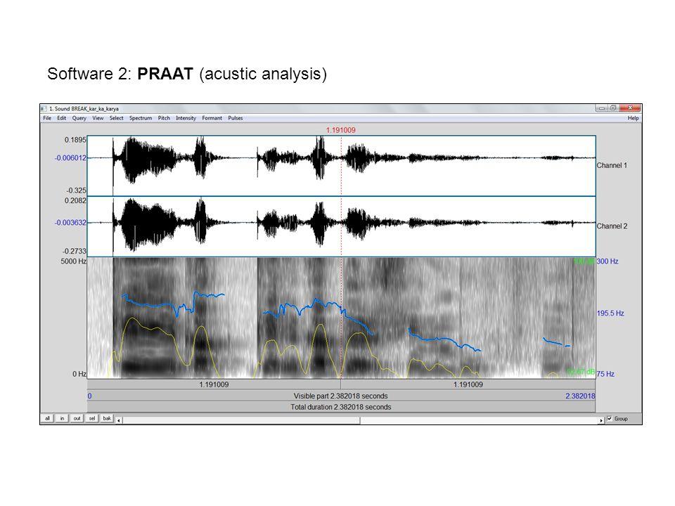 Software 2: PRAAT (acustic analysis)