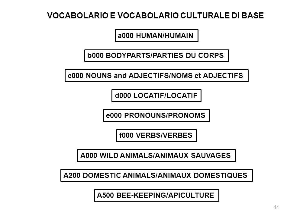 44 VOCABOLARIO E VOCABOLARIO CULTURALE DI BASE a000 HUMAN/HUMAIN b000 BODYPARTS/PARTIES DU CORPS c000 NOUNS and ADJECTIFS/NOMS et ADJECTIFS d000 LOCAT