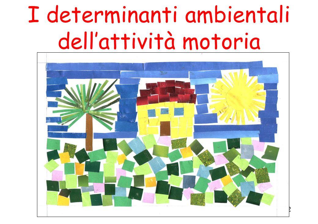 22 I determinanti ambientali dellattività motoria