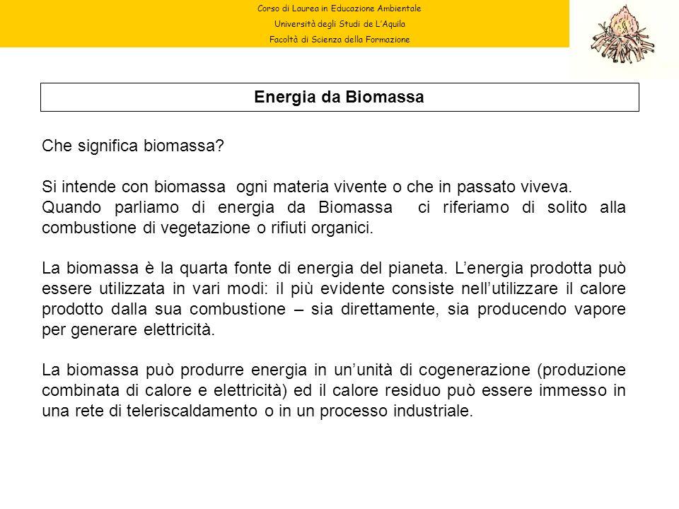 Corso di Laurea in Educazione Ambientale Università degli Studi de LAquila Facoltà di Scienza della Formazione Energia da Biomassa Che significa bioma