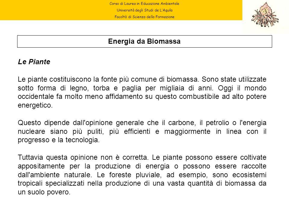 Corso di Laurea in Educazione Ambientale Università degli Studi de LAquila Facoltà di Scienza della Formazione Energia da Biomassa Le Piante Le piante
