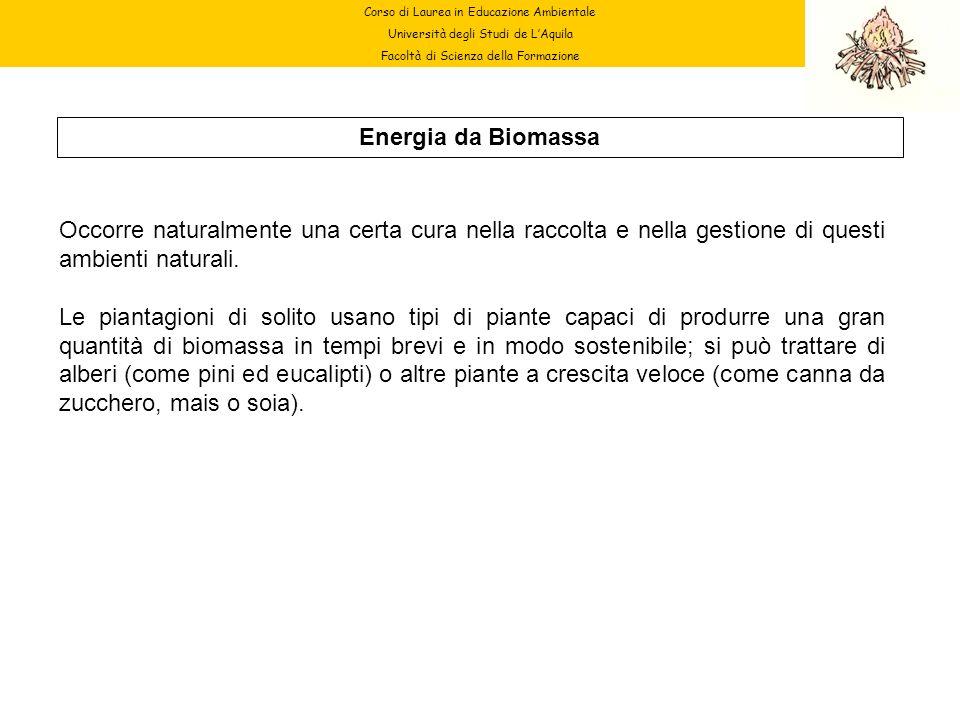 Corso di Laurea in Educazione Ambientale Università degli Studi de LAquila Facoltà di Scienza della Formazione Energia da Biomassa Occorre naturalment