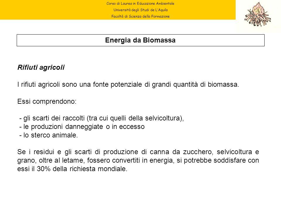 Corso di Laurea in Educazione Ambientale Università degli Studi de LAquila Facoltà di Scienza della Formazione Energia da Biomassa Rifiuti agricoli I