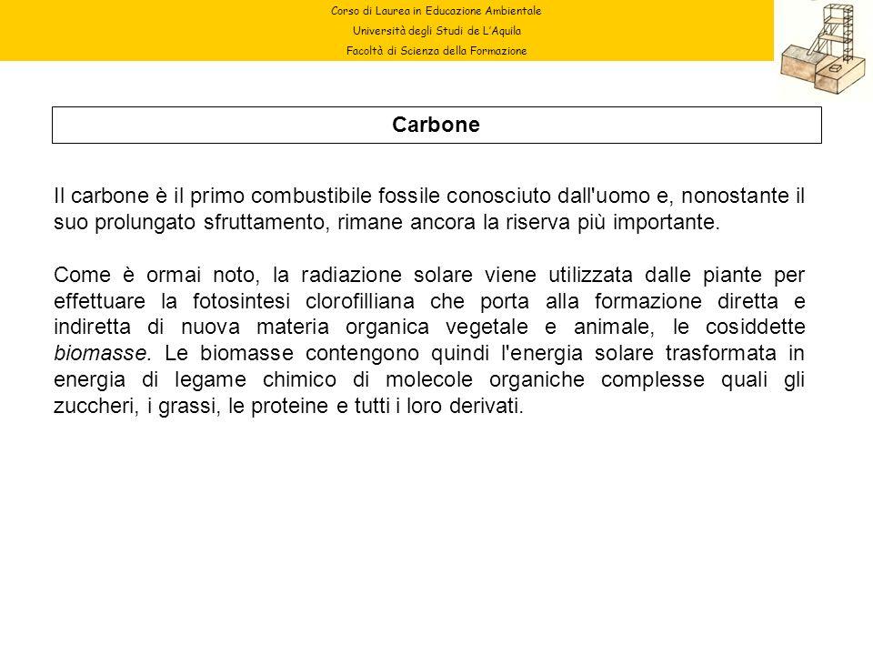 Corso di Laurea in Educazione Ambientale Università degli Studi de LAquila Facoltà di Scienza della Formazione Carbone Il carbone è il primo combustib