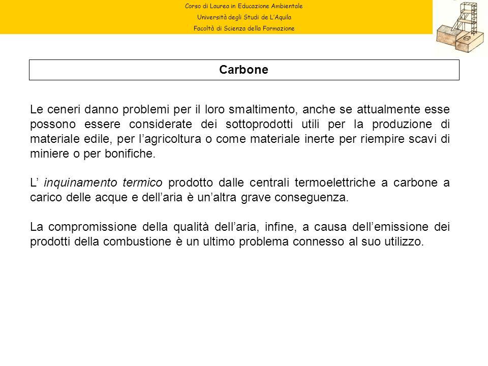 Corso di Laurea in Educazione Ambientale Università degli Studi de LAquila Facoltà di Scienza della Formazione Carbone Le ceneri danno problemi per il