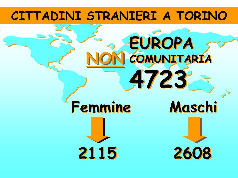 CITTADINI STRANIERI A TORINO Femmine 154 Maschi 61 EX REPUBBLICHE SOVIETICHE 215 EX REPUBBLICHE SOVIETICHE 215