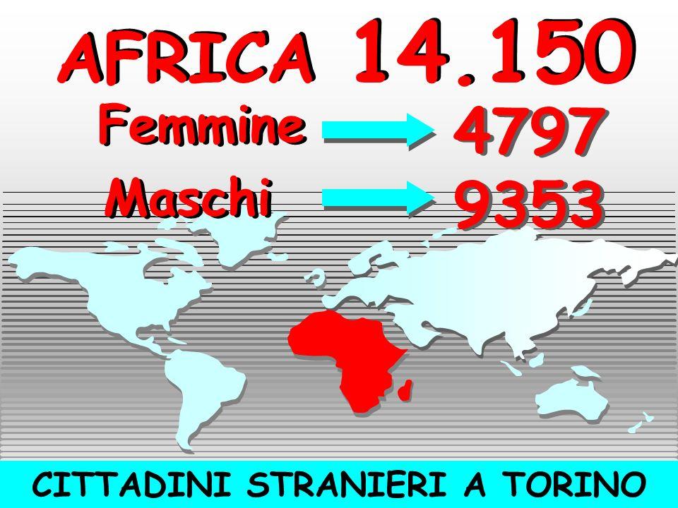 CITTADINI STRANIERI A TORINO AMERICA 3510 AMERICA 3510 Femmine Femmine Maschi Maschi 2301 1209 1209